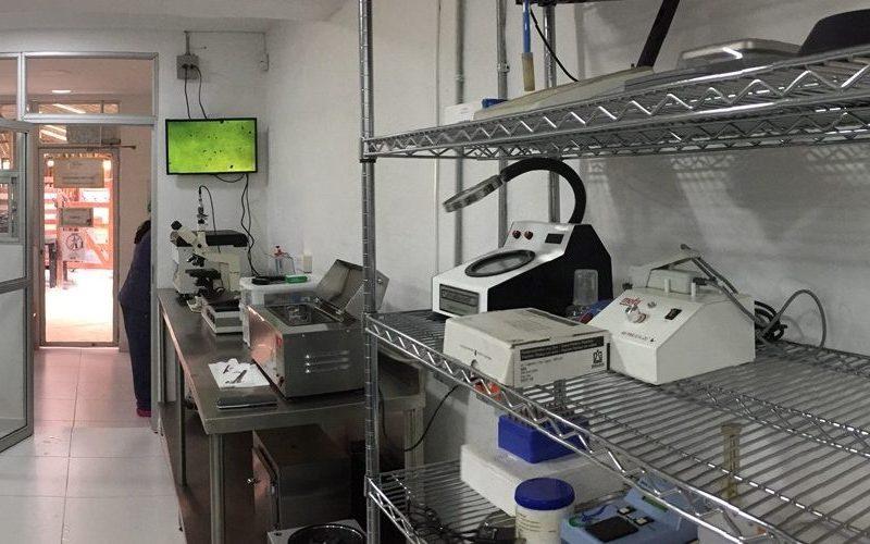 Reprovet-laboratorio-congelacion-semen-canino-1000x500