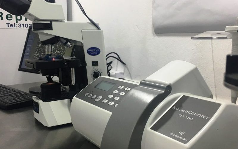 Reprovet-procesos-material-genetico-1000x500